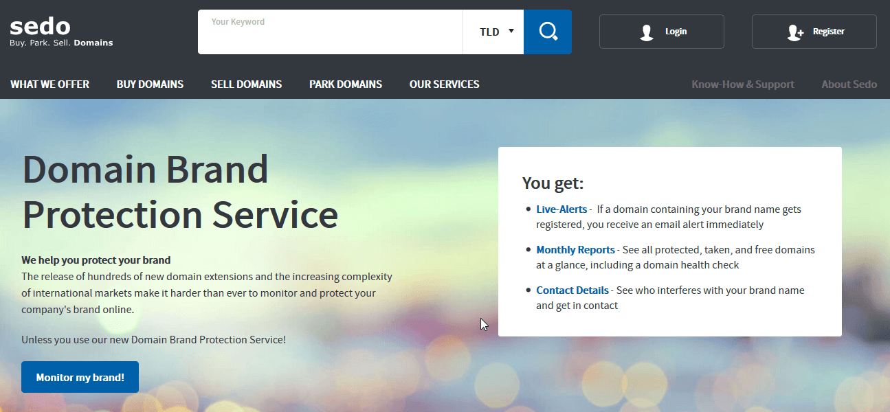 Domain-Brand-Protection-Service