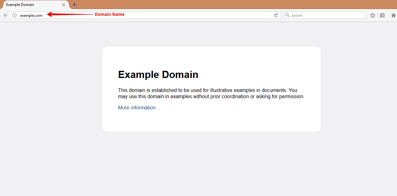 Domain-Name-Example