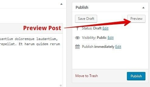Step-5-Preview-publish-post-1