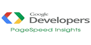 google page speed insight the best seo tools