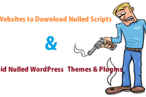 nulled-wordpress-themes