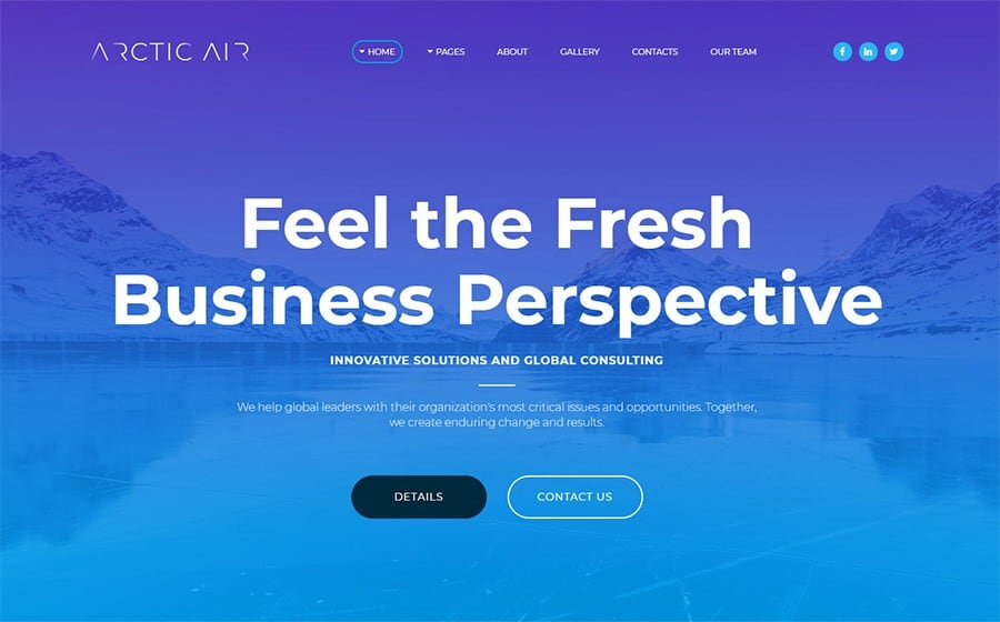 Arctic - Business Startup Moto CMS 3 Template