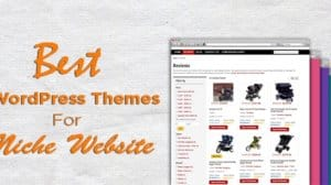 niche-theme-for-wordpress-website