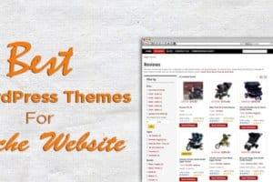 niche-theme-for-wordpress-website