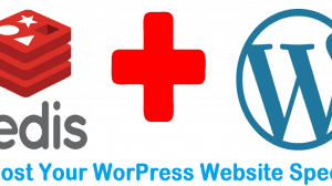 speed-up-wordpress-website-with-redis-cache