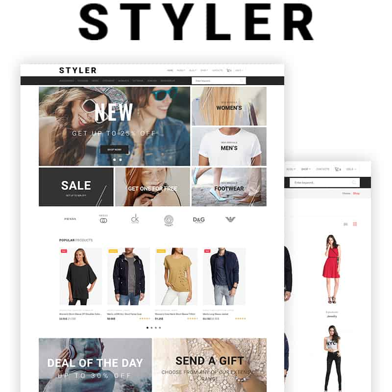 styler fashion template