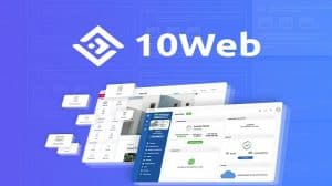 10web review